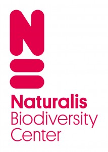 Naturalis_logo_staand_rood_01