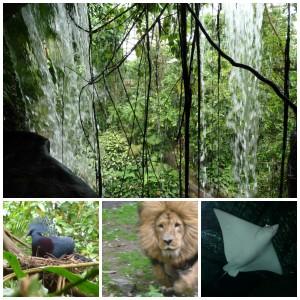 Burgers Zoo dierentuin dierenpark dagje uit gelderland arnhem erop uit