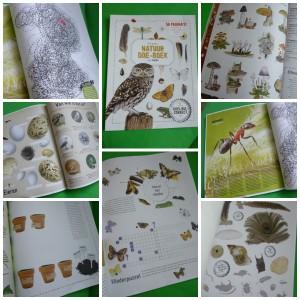 Het grote natuur doe-boek van roots