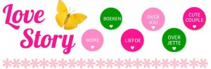 jouwlovestory.nl love story website jette schroder