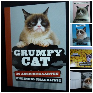 Grumpy Cat Oneindig Chagrijnig 30 ansichtkaarten boekje postkaarten postcrossing