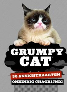 Grumpy Cat Oneindig chagrijnig 30 ansichtkaarten boekje postkaarten