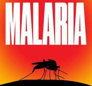 Malaria Nick Louth Thriller Xander uitgevers spannend medicijn geneesmiddelenonderzoek ziekte muggen Nederland Amsterdam medicijnonderzoek congres dagboek fragmenten wetenschapper recensie review