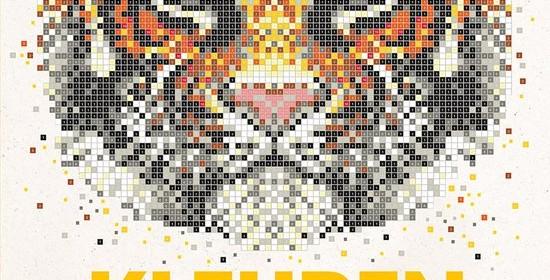 Kleuren op nummer extreme kleurpuzzels voor volwassenen recensie review kleurboek BBNC tekening plaat stift fineliner kleurpotlood kleurcodering voldoening ontspanning entertainment afbeeldingen vakje abstract dier afbeelding kleurenexplosie nummering goed licht tekening