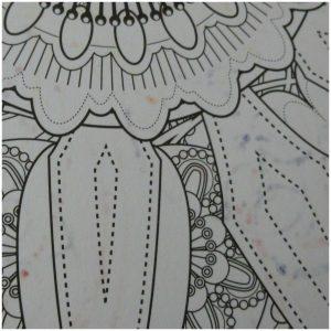Het vijfde enige echte mandala kleurboek hobby BBNC kleuren volwassenen kleurplaten recensie review mandala's onderwerp volwassenen meditatief effect aandacht middelpunt stress zorgen 200 grams papier boek verscheidenheid kleurmaterialen kleurboeken huis dochter dubbelzijdig bedrukt papier dik stevig probleem jammer ophangen kiezen verscheidenheid ronde vorm kleurplaten verschillend variatie inkleuren viltstift achterzijde doorschijnen doorgedrukt zichtbaar kleurpotlood doordrukpunten enkelzijdig euvel oppassen materiaalgebruik openliggen mesje pagina snijden