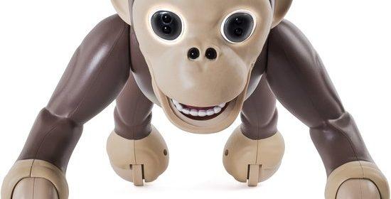 Zoomer Chimp aap huisdier eigenaren levensechte aap apenstreken verwelkomen huis testen standen chimpansee praten paars ogen commando's gebruiksaanwijzing gebruiken kwestie oefenen geduld luistert salto begreep aap snel langzaam klemtoon verkeerd redelijk goed verliest streken stiekem recensie review ervaring filmpje