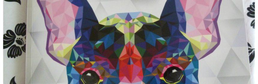 Kleuren-op-nummer Dieren BBNC recensie review kleurboek kleurtechnieken kleurmateriaal genoten verschillen resultaat kleurplezier minpuntje perforatielijn tip deel bladeren persoonlijk kleurvaardigheden proef puzzel tekeningen complexer draai creatievelingen leeftijden jong en oud