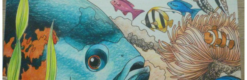 Tropisch Koraalrif Kleurboek Julia Woning BBNC kleurboeken kleuren volwassenen recensie review enkelzijdig bedrukt kleurplaten alcoholbasis markers doorgedrukt boordevol vissen duikers tekeningen formaat genieten plat nihil persoonlijk