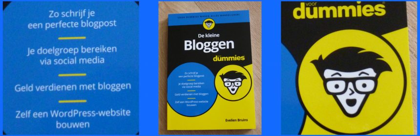De kleine bloggen voor Dummies Evelien Bruins BBNC recensie review website blog social media SEO