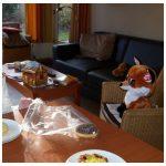Landal Coldenhove bungalow Eerbeek Gelderland Veluwe huisje vakantie klimmuur escaperoom fun en entertainment animatieprogramma zwemmen klimmen lasergamen activiteiten recensie review