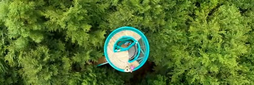 Buitencentrum Boomkroonpad Staatsbosbeheer boswandeling speeltuin onder de grond tussen de boomtoppen beweging activiteiten beklimmen toren recensie review Speelbos Lorken