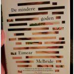De mindere goden Eimear McBride literaire roman Hollands Diep recensie review Londen Ierland Theaterschool