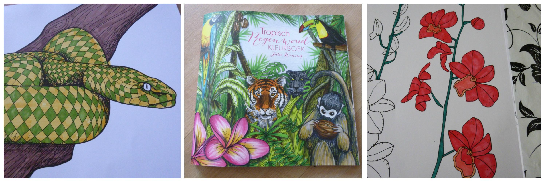 Tropisch Regenwoud Kleurboek Recensie
