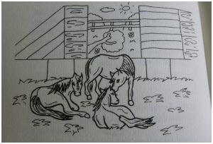 Britt & Esra De mysterieze paardendiefstal Joke Reijnders Paardenvriendin in gevaar Het avontuur met het zadel paardenliefhebbers PaardenpraatTV YouTube reeks serie recensie review