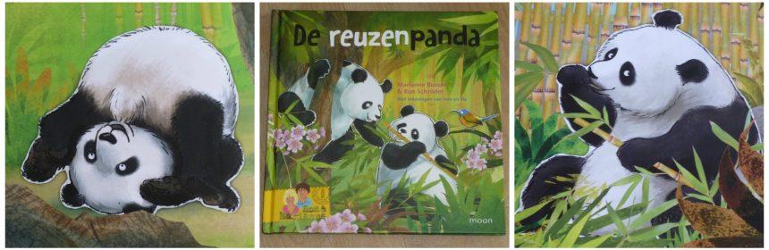 De reuzenpanda Marianne Busser Ron Schröder Uitgeverij Moon prentenboek informatief leerzaam Ouwehands Dierenpark Rhenen pandaberen Nederland recensie review