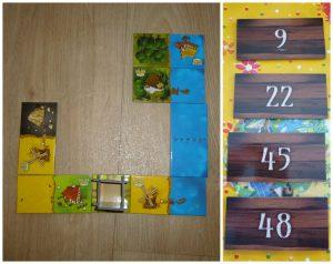 Kingdomino gezelschapsspel 8+ familiespel speelduur White Goblin Games landschap winnaar matchen punten vlakken recensie review