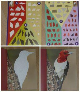 Paint by sticker Vogels meesterwerken BBNC hobby kunstwerk schilderij stickers plakken vakken code mozaïek doeboek volwassenen creatief recensie review