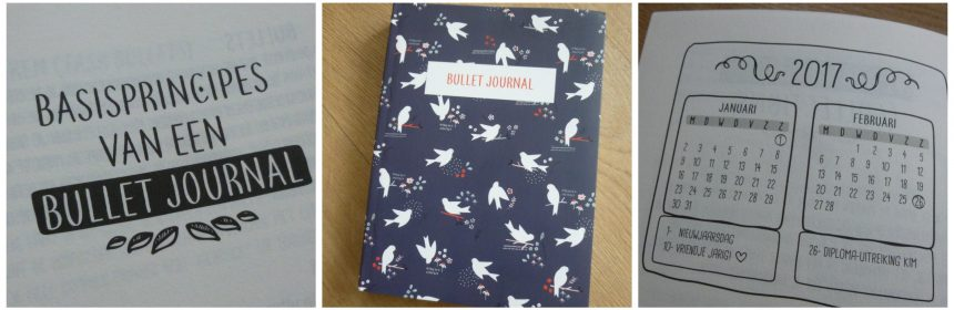 Bullet Journal Vogels of blaadjes Zamarra Kok notitieboek bujo dagboek to-dolijst wishlist bucketlist professional organizer recensie review