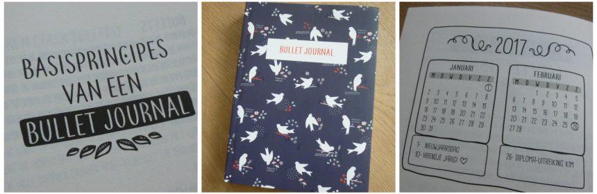 Bullet Journal Vogels of blaadjes Zamarra Kok notitieboek bujo dagboek to-dolijst wishlist bucketlist professional organizer recensie review