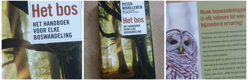 Het bos Peter Wohlleben LEV Boeken natuur handboek boswandeling Duitsland ons land Nederland recensie review