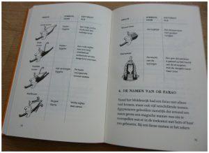 Professor Kleinbrein Egyptenaren Sarah Devos geschiedenis graphic novel Heleen Brulot Lannoo informatief schoolbibliotheek recensie review