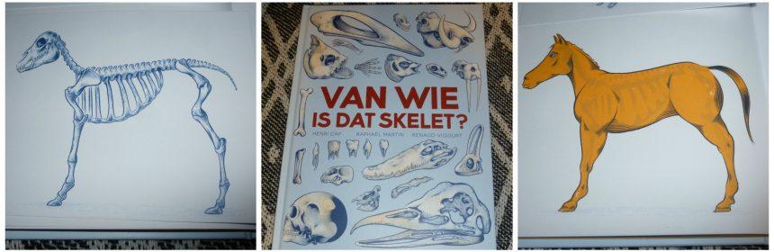 Van wie is dat skelet? Henri Cap Raphaël Martin Renaud Vigourt Gottmer natuur jeugd informatief educatief schoolbibliotheek flapjes recensie review