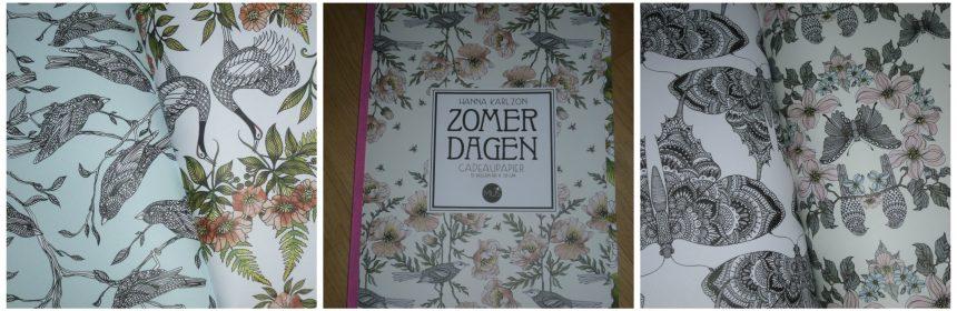 Zomerdagen Cadeaupapier boek inpakpapier inpakpapier kadootje kaften patronen luxe recensie review