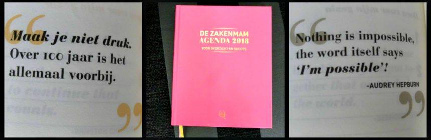 De Zakenmam Agenda 2018 moeder eigen bedrijf privé gezin afspraken overzicht focus hardcover weekplanning notities ruimte leeslinten indeling map bonnetjes kalender recensie review