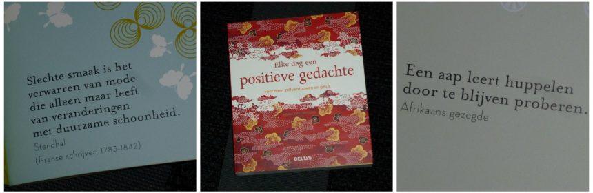 Elke dag een positieve gedachte Janine Caseveccie Deltas cadeauboek presentje spreekwoord uitspraak sfeervol boekje spreuken recensie review