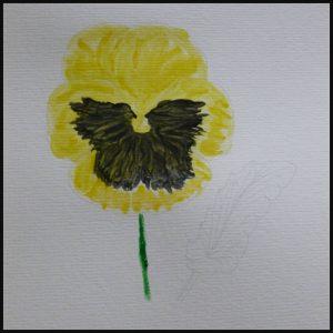 Bloemen Aquarelblok en instructies Rachel Pedder-Smith hobby BBNC MUS Creatief schilderen bloemen verven aquarelpapier tekenen instructies prenten stap voor stap werkboek recensie review