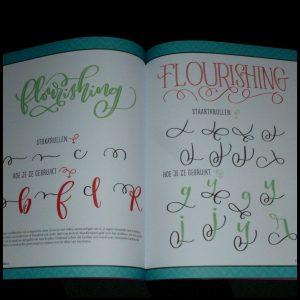 Pretletters Brittany Luiz hobby handlettering vectorbestanden digitaliseren Adobe® Photoshop® Illustrator® software opdrachten bedrukken teksten lettertypen stap voor stap inspirerend recensie review