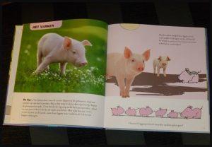 De leukste babydieren Mack natuur Wondere Wereld Clavis foto's prenten tekeningen vragen informatief informatie dieren wild boerderij ontdekken lezen dierenboek recensie review