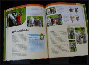 Ik leer paardrijden Ute Ochsenbauer Deltas informatief sport pony paard manege paardrijles balansoefeningen opzadelen poetsen omgang poetsen grondwerk leren paardrijden informatie oefeningen ruiter recensie review