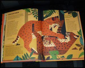 wild van katten Owen Davey natuur prentenboek informatief Fontaine Uitgevers prenten illustraties tekeningen leeuw tijgers luipaarden margay roestkat nevelpanter katachtigen wilde dieren beesten eigenschappen levensecht recensie review