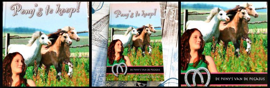 De pony's van de Pegasus Pony's te koop Jeanette Molema Zelf Lezen paardenreeks boekenreeks Ponyruil op de pegasus boerentaaltje spannend begin manege weiland zomervakantie paarden onzekerheid spanning recensie review