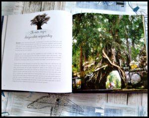 WOW Ik kan toveren Magische planten en dieren Mack van Gageldonk Clavis natuur informatief foto's bomen paddenstoelen kikkervisjes rups vlinder veranderingen eigenschappen recensie review