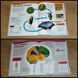 Waarom? De encyclopedie van de natuur, wetenschap en techniek natuur en wetenschap informatief kinderen jeugd Lannoo hoofdstukken onderwerpen menselijk lichaam energie planeet interesse foto's afbeeldingen uitleg quiz kaders raadsel nadenken nieuwsgierig recensie review