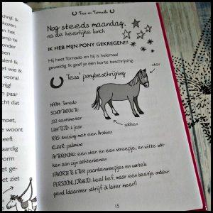 Ponykamp Avonturen: Het dagboek van Tess Kelly McKain Mandy Stanley Zelf Lezen Deltas zomerkamp ponykamp manege stal pony jongens meiden meisjes verhalen karakters personages comfortzone paarden introductie lessen tornado zelfvertrouwen boekenreeks boekenserie recensie review