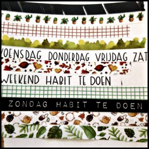 Creachick washitape groen bruintinten natuur cactussen groene bladeren herfstbladeren vrolijk theepot theezakjes mogelijkheden taperolletjes tracker habit te doen dagen journal agenda afscheurbaar doosje washitapes creatievelingen creatief plakken MUS Creatief recensie review washi tape